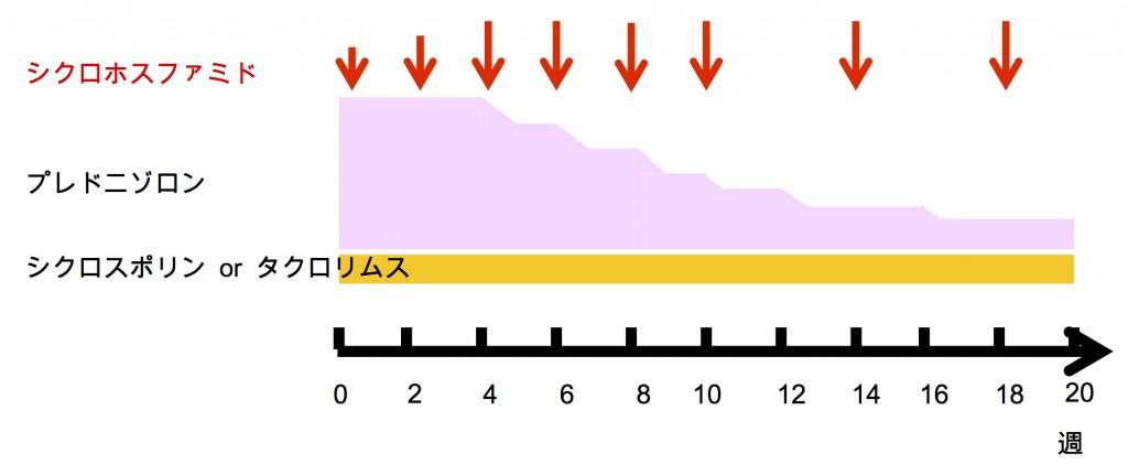 抗MDA5抗体陽性例に対する3剤併用治療